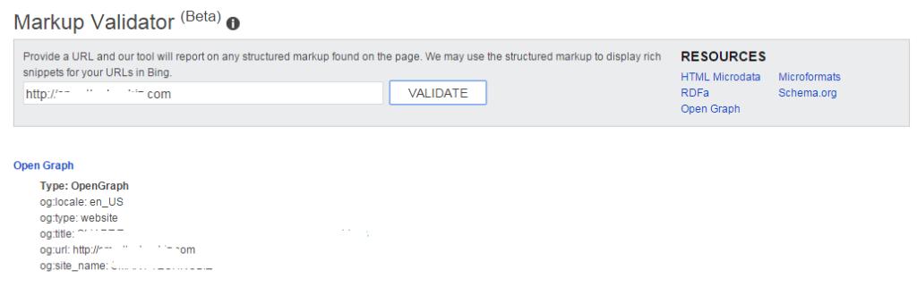 bing markup validator